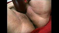 zsizsi, full insertion