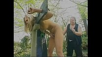 A pilloried girl submitted to a hard punishment