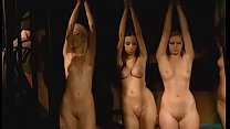 Slave examination auction - CMNF