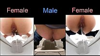 Comparison between female pissing and male pissing - 7