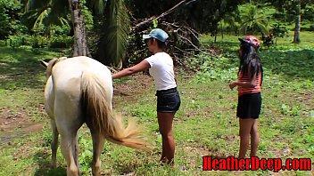 HEATHERDEEP.COM TEEN Girls vs Horse size cock